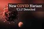 WHO cảnh báo về biến thể COVID-19 đáng lo ngại nhất, vượt mặt các biến thể khác-3