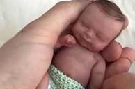 Vợ bầu 6 tháng, đêm đi làm về chồng sợ tái mặt khi thấy đứa con đang nằm lọt thỏm trong bàn tay vợ