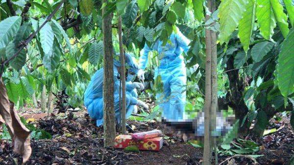 Bí ẩn xác chết treo trên cây giữa rẫy cà phê (Kỳ 1): Nữ giáo viên trẻ tuổi và vết bớt sau lưng-2