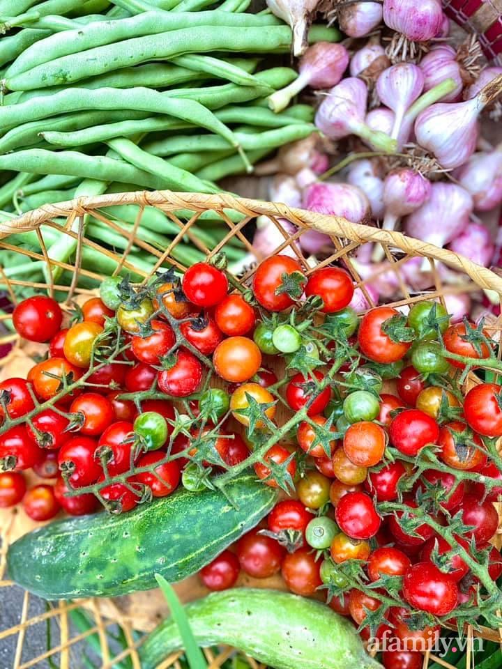 Khu vườn 200m² phủ kín rau xanh, quả sạch không khác gì nông trại của mẹ đảm Quảng Ninh-9