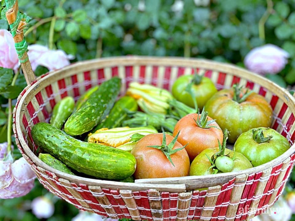 Khu vườn 200m² phủ kín rau xanh, quả sạch không khác gì nông trại của mẹ đảm Quảng Ninh-31