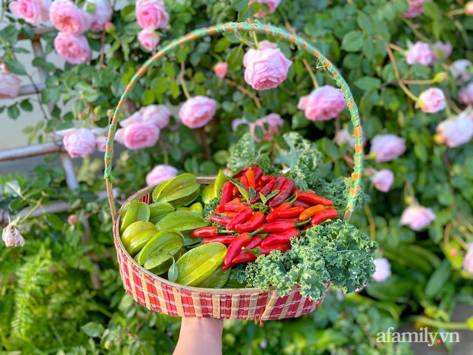 Khu vườn 200m² phủ kín rau xanh, quả sạch không khác gì nông trại của mẹ đảm Quảng Ninh-36
