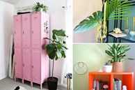 Tip trang trí nhà cửa hữu ích mà tiết kiệm, cho bạn không gian sống mới lạ nhưng không hề tốn kém