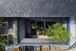 Nhà mái tranh 2 tầng xanh mướt ở Hội An-7