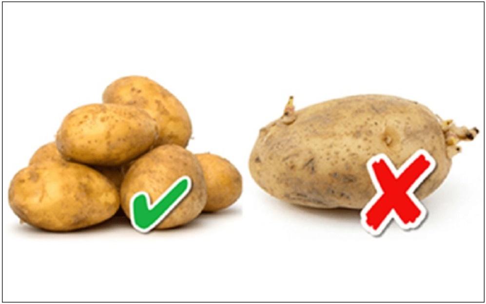 Chọn khoai tây, khoai môn chỉ cần nhìn vào 1 điểm là biết khoai bở bùi, cực thơm ngon-1