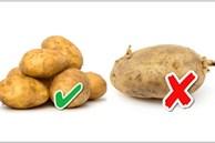 Chọn khoai tây, khoai môn chỉ cần nhìn vào 1 điểm là biết khoai bở bùi, cực thơm ngon
