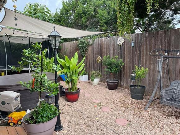 Ngắm vườn rau 350 m2 của ca sĩ Quách Thành Danh ở Mỹ-13