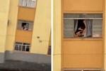 Rùng mình khoảnh khắc thai phụ giãy giụa tìm cách nhảy khỏi cửa sổ và nguyên nhân chua chát phía sau