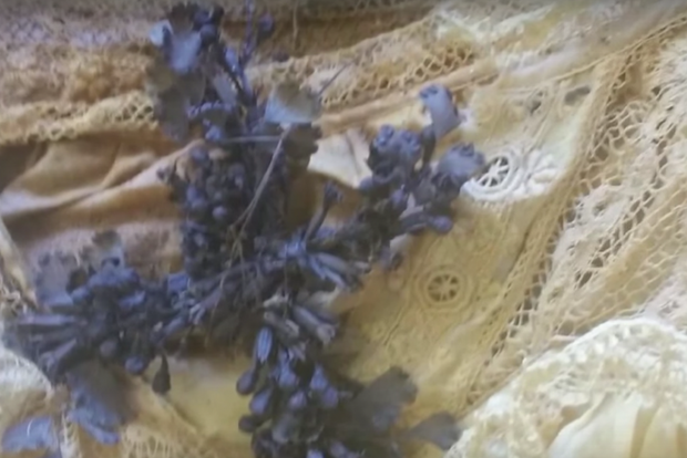 Đào quan tài kính dưới lòng đất, các nhà khoa học sửng sốt thấy bé gái vẹn nguyên như thiên thần say ngủ cùng bí mật bị chôn vùi 140 năm-2