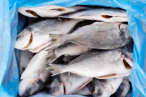 Dù rã đông loại cá nào đi chăng nữa, hãy nhớ đừng ngâm trong nước. Đầu bếp dạy bạn một mẹo đơn giản và nhanh chóng, cá tươi ngon hơn cá sống-3