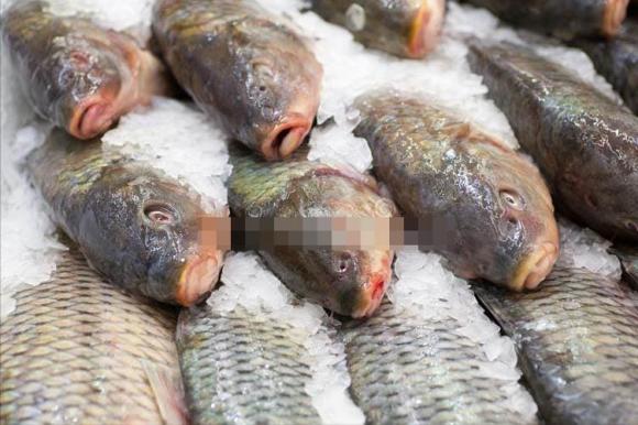Dù rã đông loại cá nào đi chăng nữa, hãy nhớ đừng ngâm trong nước. Đầu bếp dạy bạn một mẹo đơn giản và nhanh chóng, cá tươi ngon hơn cá sống-4