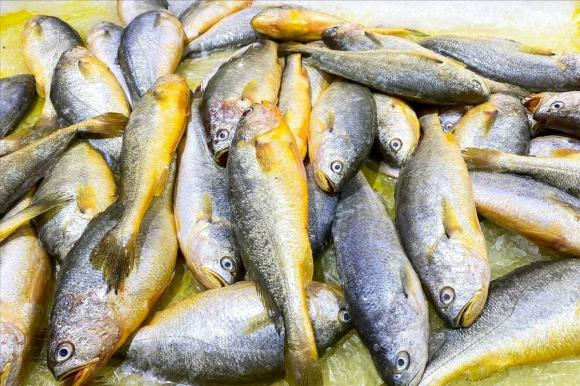 Dù rã đông loại cá nào đi chăng nữa, hãy nhớ đừng ngâm trong nước. Đầu bếp dạy bạn một mẹo đơn giản và nhanh chóng, cá tươi ngon hơn cá sống-5