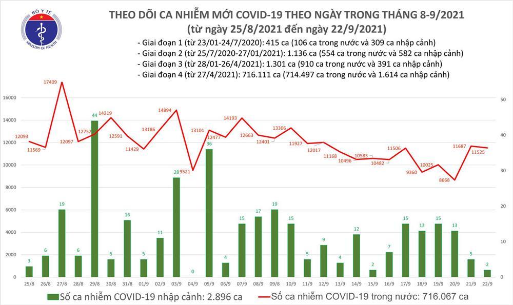 Ngày 22/9: Có 11.527 ca mắc COVID-19, riêng TP HCM và Bình Dương đã ghi nhận hơn 9.600 ca-1