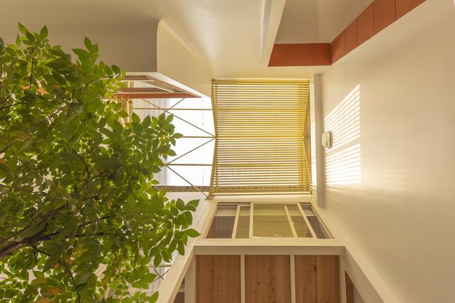 Nhà mái đôi Sài Gòn xinh ngất ngây với thiết kế lõi xanh, chỉ ngắm cũng thấy ngập tràn năng lượng tích cực-5
