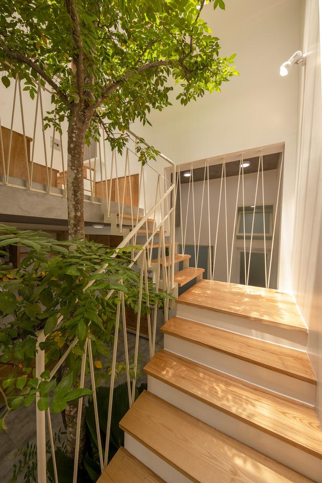 Nhà mái đôi Sài Gòn xinh ngất ngây với thiết kế lõi xanh, chỉ ngắm cũng thấy ngập tràn năng lượng tích cực-12