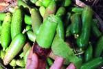 Ngã ngửa 6 loại rau đặc sản mọc hoang giá đắt hơn thịt-11
