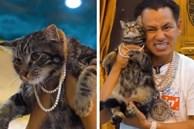 Đẳng cấp mèo nhà triệu phú Johnny Đặng: Cổ đeo sương sương vài chục viên kim cương nặng trĩu!