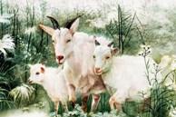 Từ tháng 10 đến tháng 12, 3 con giáp không có chuyện xấu, gặp nhiều điều tốt, sẽ trở nên giàu có trong một sớm một chiều
