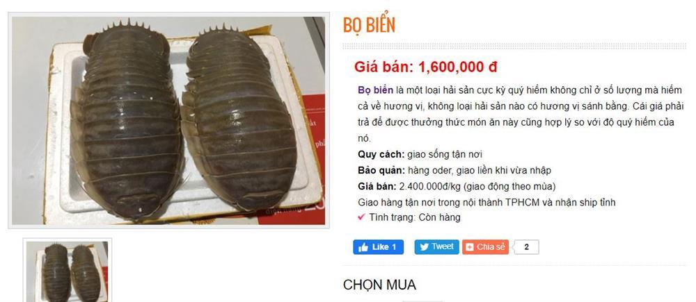 Việt Nam có loại hải sản mệnh danh xe tăng lội nước, giá bán 1,5 triệu/kg, có tiền chưa chắc đã mua được-2