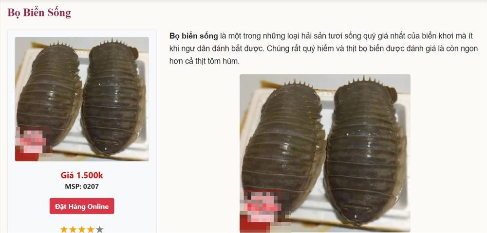 Việt Nam có loại hải sản mệnh danh xe tăng lội nước, giá bán 1,5 triệu/kg, có tiền chưa chắc đã mua được-3