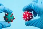 R.1 - biến chủng đã lan tới 35 quốc gia có thể khiến những người đã tiêm chủng đầy đủ cũng phải lo lắng