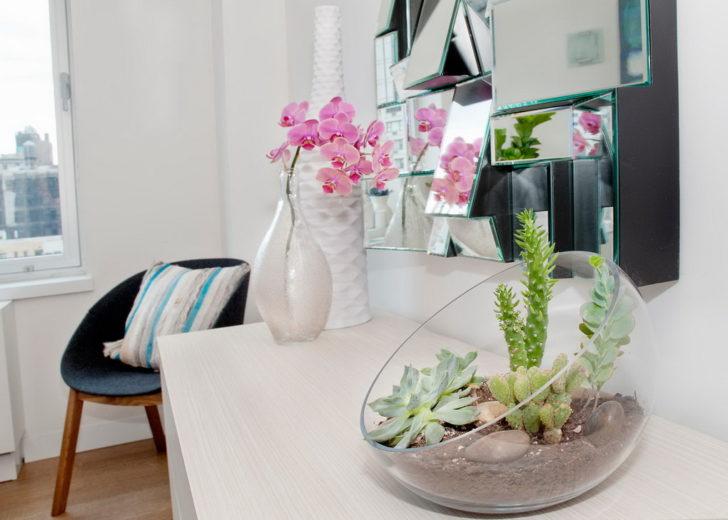 Cây cảnh trong nhà dành cho người bận rộn: Dù ít thời gian chăm sóc, bạn vẫn có những không gian xanh tuyệt vời-10