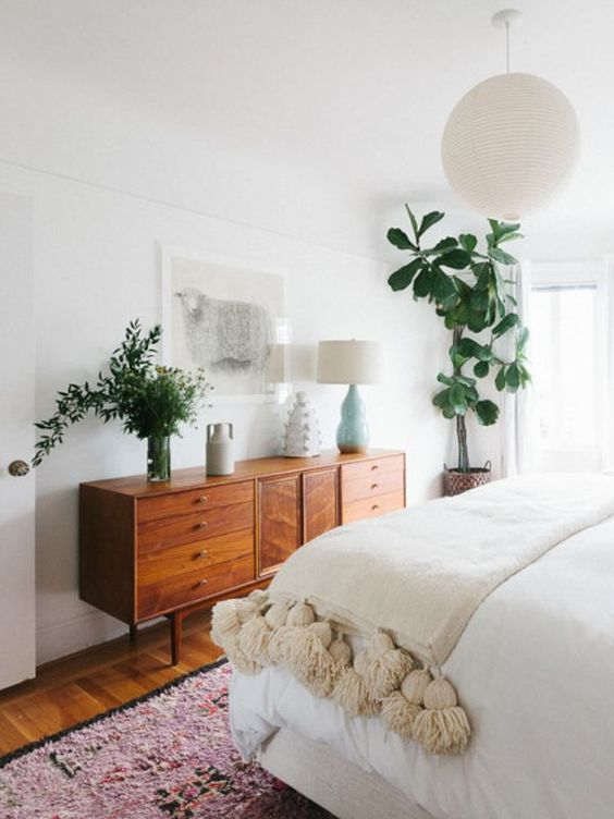 Cây cảnh trong nhà dành cho người bận rộn: Dù ít thời gian chăm sóc, bạn vẫn có những không gian xanh tuyệt vời-15