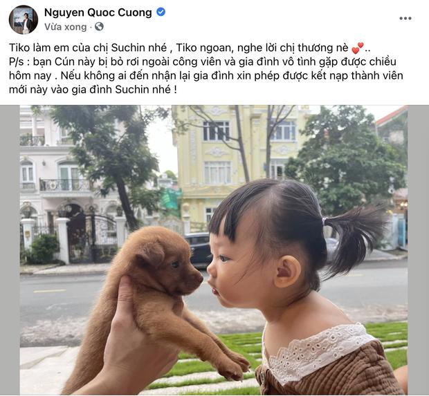 Cường Đô La vừa đón thêm thành viên mới bị bỏ rơi ngoài công viên, ái nữ Suchin mới 1 tuổi đã có em rồi!-1