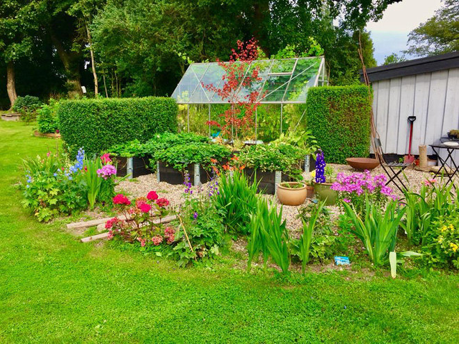 Khu vườn cổ tích của hai chàng trai có cùng sở thích trồng rau, nuôi gà-5