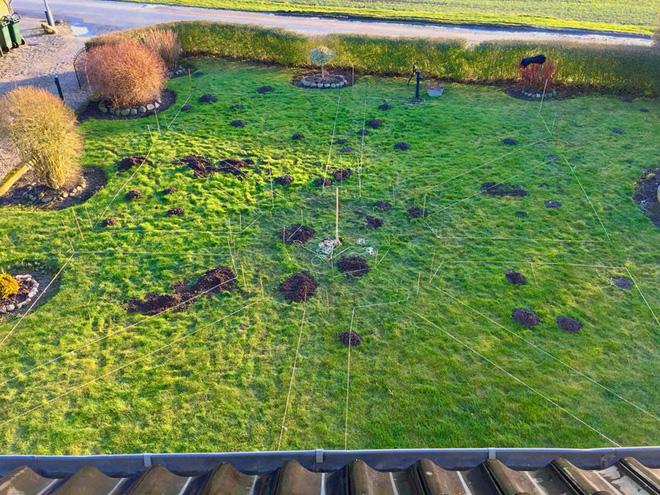 Khu vườn cổ tích của hai chàng trai có cùng sở thích trồng rau, nuôi gà-6