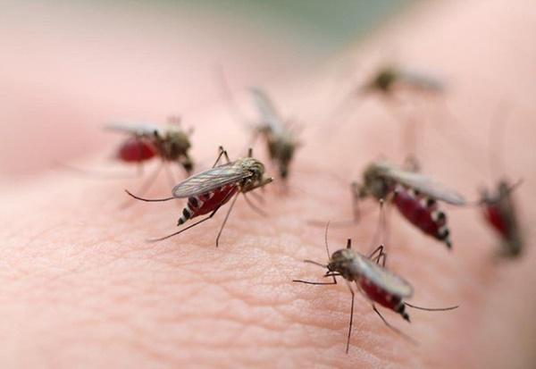 Căn bệnh dễ bùng phát thành dịch tấn công trẻ nhỏ trong thời điểm hiện tại, dắt túi ngay 4 bài thuốc chữa bệnh cho con-1