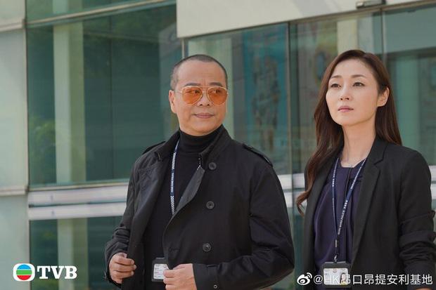 Ngày tàn của TVB đã tới: Để kẻ hiếp dâm đồi bại làm lãnh đạo, hàng loạt sao lớn trụ cột dứt áo ra đi?-2