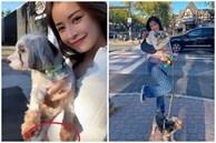 Netizen soi vòng 2 to bất thường của Chi Pu, còn dùng thủ thuật để che chắn bụng sau khi sang Mỹ?