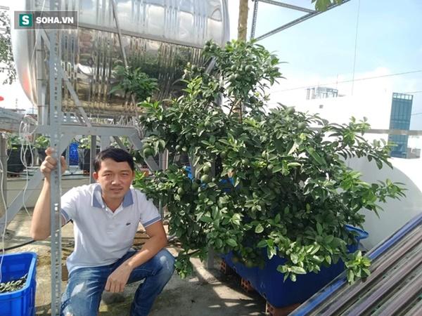 Có gì trong khu vườn của đại gia trái cây trên sân thượng?-1