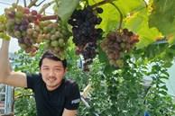 Có gì trong khu vườn của 'đại gia trái cây trên sân thượng'?