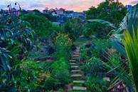 Cô gái dừng học đại học, về quê trồng cây trong khu vườn rộng 7000m² đẹp mê mẩn ở trung tâm thành phố Đà Lạt