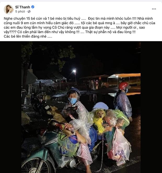 Sao Việt lên tiếng trước thông tin 15 chú chó bị thiêu huỷ: Văn Mai Hương - Sĩ Thanh quá đau lòng, Hồng Ánh bật khóc không dám tin-4