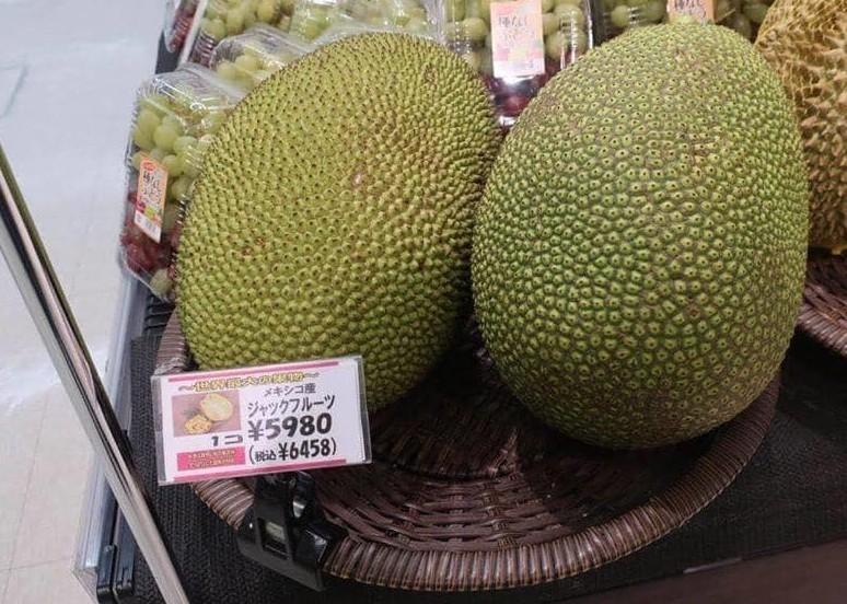 Loại hạt người Việt ăn xong vứt bỏ, được coi là bổ dưỡng, bán đắt giá ở Nhật-2