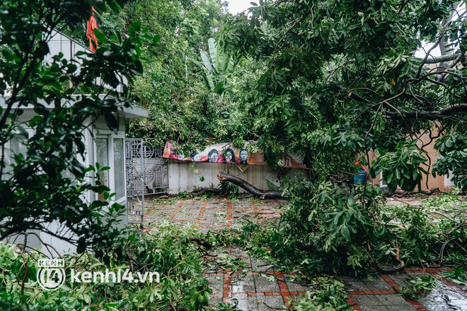 Hà Nội: Bão số 7 gây mưa lớn cả ngày, nhiều cây xanh bật gốc, đè bẹp xế hộp Camry-10