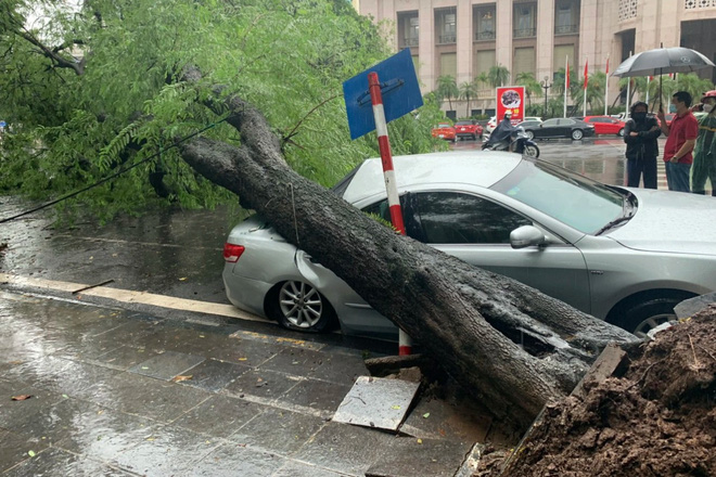 Hà Nội: Bão số 7 gây mưa lớn cả ngày, nhiều cây xanh bật gốc, đè bẹp xế hộp Camry-13