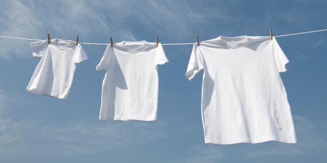 Phải làm gì nếu quần áo bị mốc? Dùng nắm giá đỗ chà lên quần áo có chất liệu cotton, bạn sẽ thấy điều kỳ diệu xảy ra-3