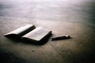 Trong cuốn nhật ký dưới nệm, tôi phát hiện ra bí mật của vợ