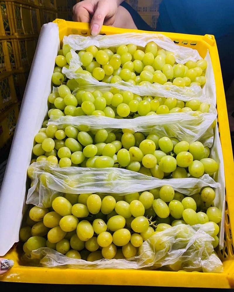 Nho Trung Quốc đổ về chợ Việt, có loại giá rẻ như khoai lang-2