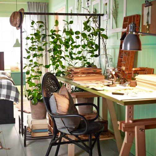 15 ý tưởng trồng cây trong nhà theo phong cách hiện đại, những người yêu cây nhất định đừng bỏ qua-4