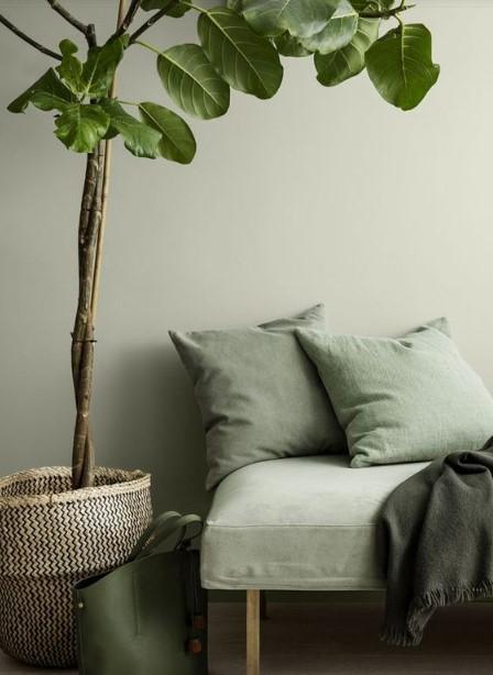 15 ý tưởng trồng cây trong nhà theo phong cách hiện đại, những người yêu cây nhất định đừng bỏ qua-10