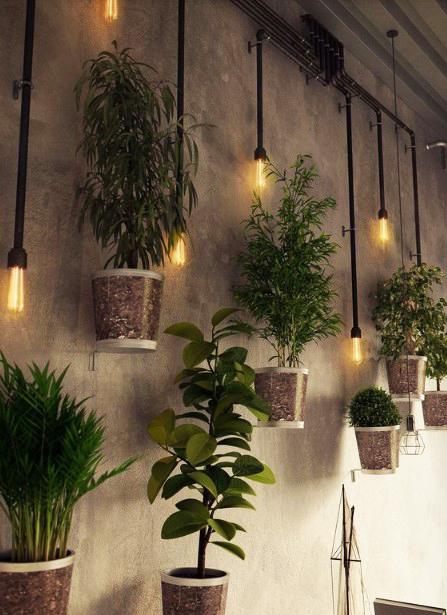 15 ý tưởng trồng cây trong nhà theo phong cách hiện đại, những người yêu cây nhất định đừng bỏ qua-16