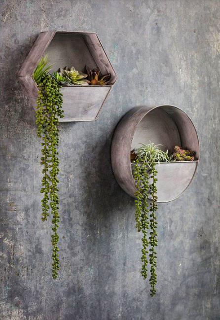 15 ý tưởng trồng cây trong nhà theo phong cách hiện đại, những người yêu cây nhất định đừng bỏ qua-20