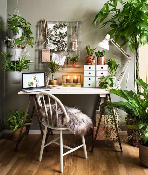 15 ý tưởng trồng cây trong nhà theo phong cách hiện đại, những người yêu cây nhất định đừng bỏ qua-24