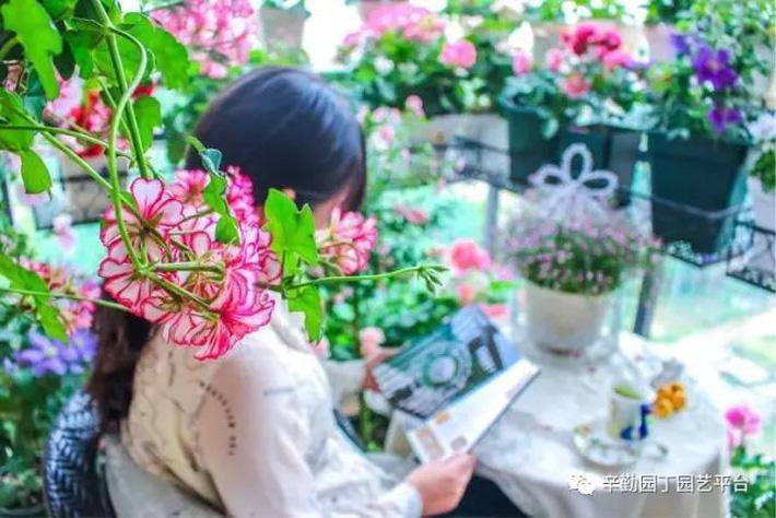 Ban công chỉ rộng vỏn vẹn 7m² nhưng tràn ngập hoa đẹp như cổ tích của bà mẹ 2 con-3