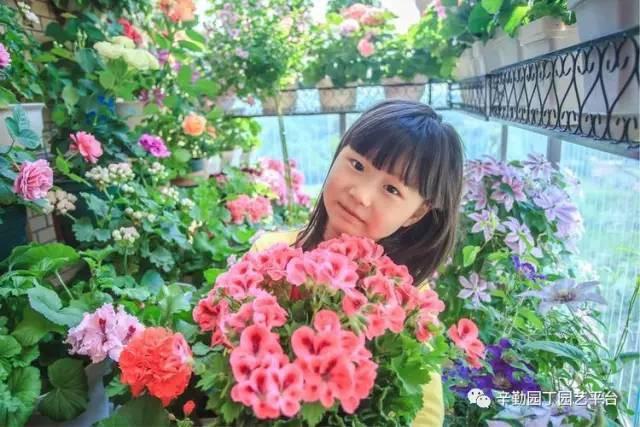 Ban công chỉ rộng vỏn vẹn 7m² nhưng tràn ngập hoa đẹp như cổ tích của bà mẹ 2 con-16